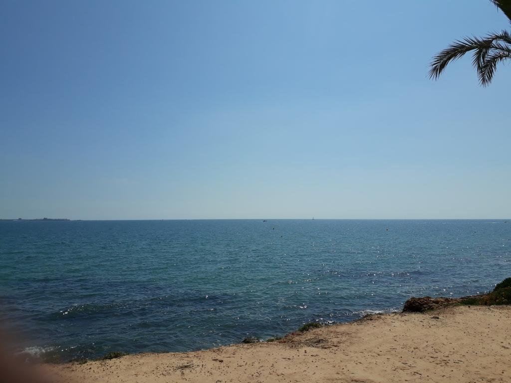 Mar mediterráneo, pequeña isla al fondo,hoja de palmera primer término